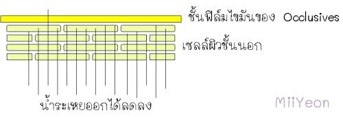 occlusive 4-e