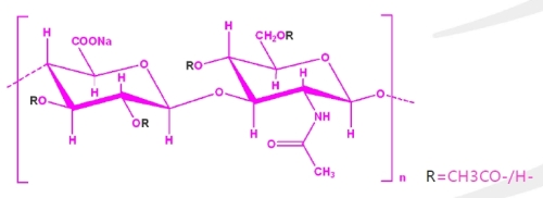 Hymagic 1